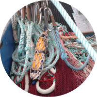 ECOSYSTEM APPROACH TO FISHERIES